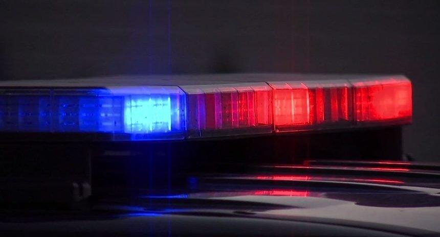 POLICE-LIGHTS_3952478_ver1.0-1