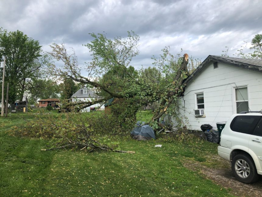 Tree down on home in Moberly