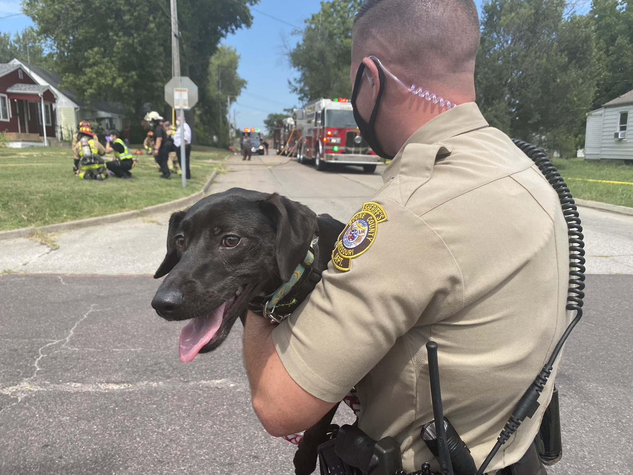 Dog escapes Columbia house fire