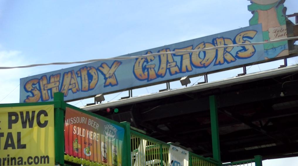 Shady Gators in Lake Ozark