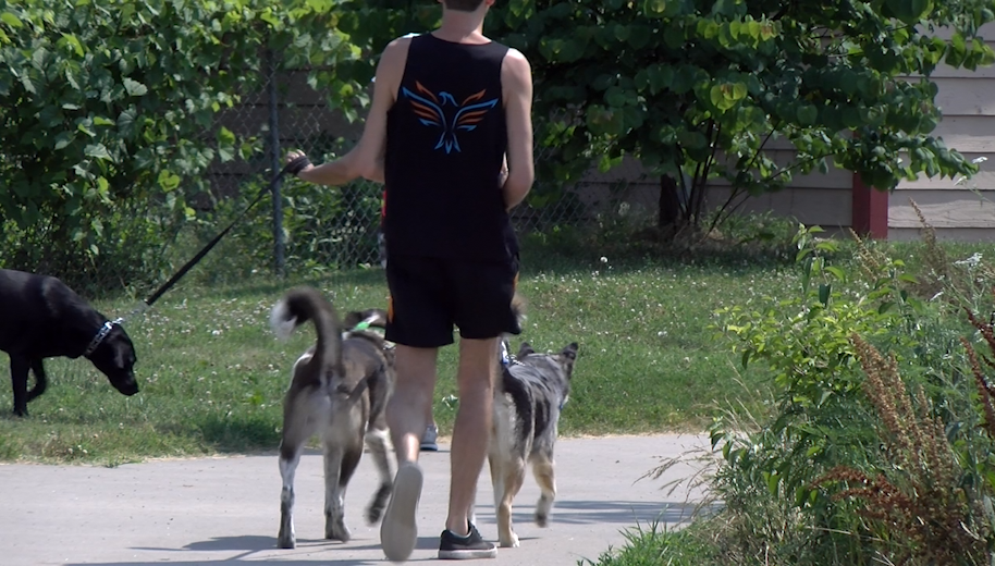 Pet owners taking their dogs for a walk at Twin Lakes Dog Park