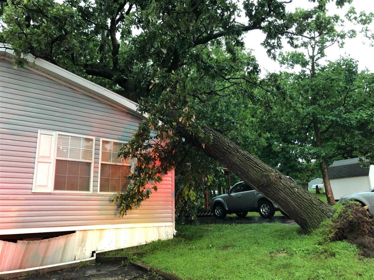 Tree into mobile home off Clark Lane