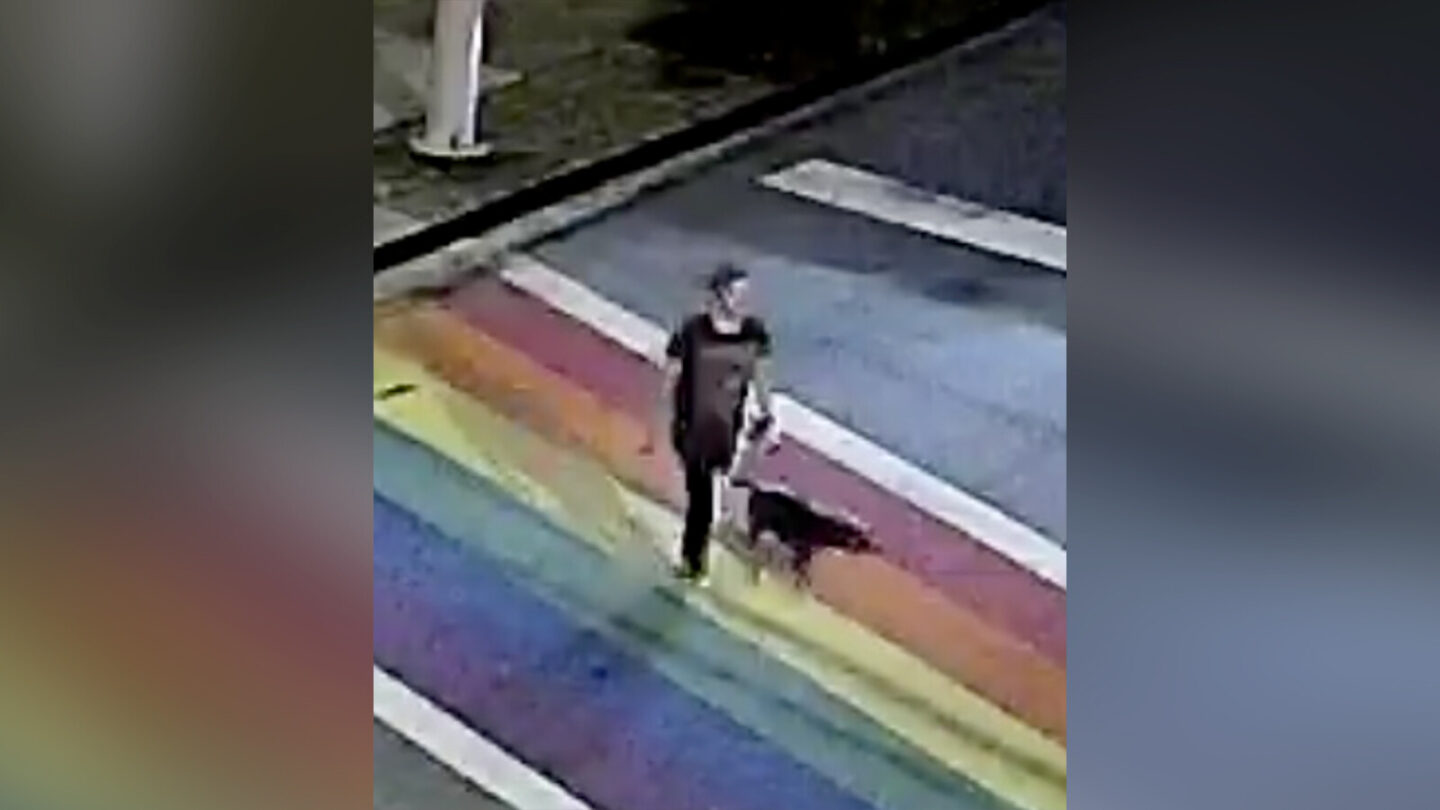 <i>Crimestoppers</i><br/>Police are investigating the killing of a woman and her dog in Atlanta's Piedmont Park.
