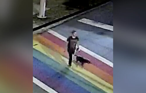 Police are investigating the killing of a woman and her dog in Atlanta's Piedmont Park.