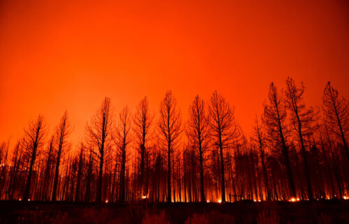 The night sky glowing after trees burned along Highway 395 during the Dixie Fire in the early morning of Aug. 17 near Janesville