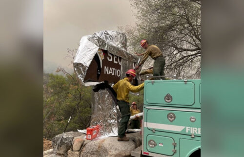 Firefighters assigned to the KNP Complex Fireprepare the historic Sequoia entrance sign for the possibility of fire in the area by wrapping it with aluminum-based burn-resistant material.