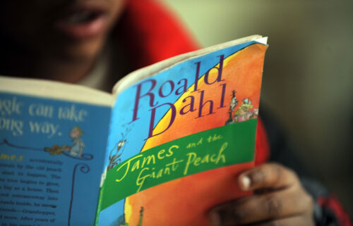"""Netflix says it has acquired the rights to Roald Dahl's stories and plans to create a """"unique universe"""" of products based on them."""